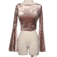 Crushed Velvet Top (mauve)