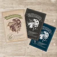 Dinosaur Invitation Dinosaurs Printable Birthday Invitation - T-Rex Dinomite Fossil Dig Prehistoric party invite - vintage, chalkboard, teal