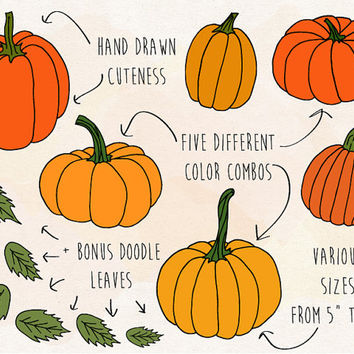 SALE. Fall Pumpkin Clipart. Hand Drawn Pumpkin Clip Art. Thanksgiving Pumpkin Illustrations. Doodle Halloween, Fall, Autumn, Leaf Clipart.