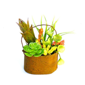 Rusty Miniature Pail with Artificial Succulents Fairy Garden Dollhouse Plants