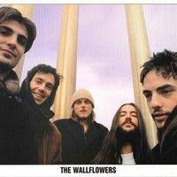 The Wallflowers 1996 Band Poster 24x34