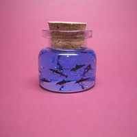Tiny dolphins in a tiny bottle