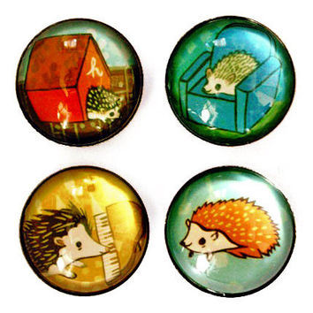 Hedgehog Magnet Set