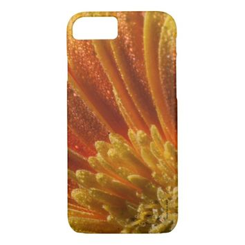 Orange Blossom with colorful petals iPhone 7 Case
