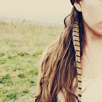 Handmade Extra Long Pheasant Feather Extension Hair Clip, 10 inches long, feather symbolism