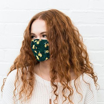 N95 Mask: Adult Protective Cloth Face Mask (COVID-19)