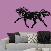 Wall Decals Horse Animals Home Vinyl Decal Sticker Kids Nursery Baby Room Decor kk218