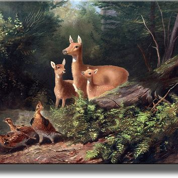 Deer, Pheasant Birds in the Forest Wall Picture on Acrylic , Wall Art Decor Ready to Hang!.