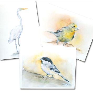 Bird Watercolor Note Cards Set - White Envelopes