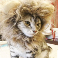 Prymal Lion Mane Cat & Dog Costume. This Pet Costume Turns Your Pet Into a Ferocious Lion!