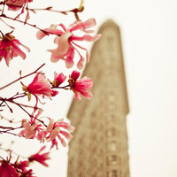 Flatiron Building, Spring, New York Print, Pink Magnolia Blossoms, NYC Art, Beige, Pink, NY decor