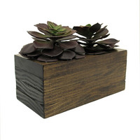 Mini Planter, Succulent Planter, Wood Planter, Modern Planter, Succulent Pot, Planter Box, Geometric Planter, Indoor Planter, Rustic Planter