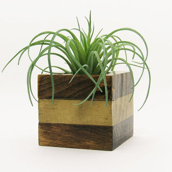 Small Wood Succulent Planter Pot, Modern Cube Plant Holder, Indoor Garden Planter Box, Cactus Planter, Office Planter, Home Decor, Gold