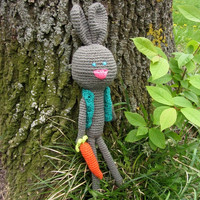 Cute Bunny with Carrot, Crochet Amigurumi, Crochet and Stuffed Toy, Nice Toy Friend