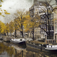 Amsterdam Canal Photography, Europe Travel, Houseboats, Large Wall Art, Trees Yellow Grey Art, Water - Canal Life