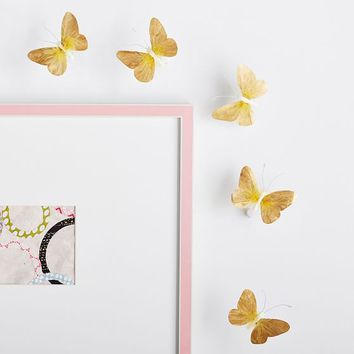 Feather Butterflies, Set of 5