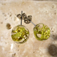 Wolf Lichen (Letharia vulpina) Sphere Stud Earring, Moss Jewelry, Plant, mycology, fungi, woodland, nature, surgical steel, Okanagan