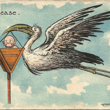 Baby and Stork Baby Boy Comic Series Vintage Postcard 1907 Copyright by Julius Bien & Company New York Fun Baby Shower Image