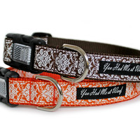 Pumpkin Patch Royalty Dog Collar