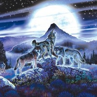 Night Wolves 1000pc Jigsaw Puzzle