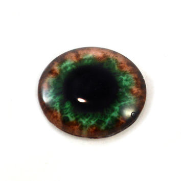 Glass Eye Cabochon 30mm Green and Brown Fantasy Steampunk Human Eye for Pendant Jewelry Making or Taxidermy Doll Eyeball Flatback Circle