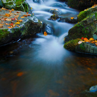 Nature Photography, Magical Creek in Wisconsin, Set of 3 Photo Cards, Blue Water, Waterfall, Fairy Land, Autumn Photo