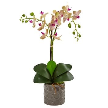 Artificial Flowers -Double Phalaenopsis Orchid In Gray Ceramic Pot Arrangement