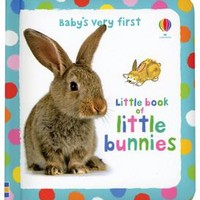 Usborne Books & More. Baby's Very First Little Book of Bunnies