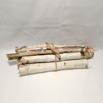 Rustic Birch Logs - Rustic Decor - Rustic Wedding - Fireplace Logs - Rustic Home Decor - Decorative Logs - Birch Log - Fireplace Bundle