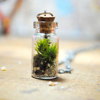 The Tiny Terrarium Necklace with live kentucky moss