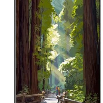Muir Woods National Monument, California - Pathway Art Print by Lantern Press at Art.com