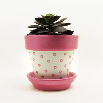Terracotta Pot, Succulent Planter, Pink Planter, Succulent Pot, Flower Pot, Modern Planter, Indoor Planter, White Planter, Polka Dot Pot