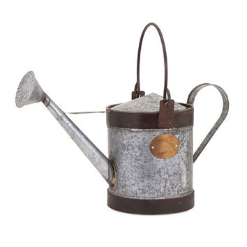 August Grove Decorative Walsh Watering Can