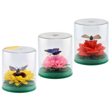 Bulk Solar-Powered Fluttering Butterflies in Plastic Terrariums at DollarTree.com