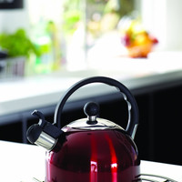 Stainless Steel Tea Kettle in Various Colors