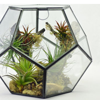 Geometric Terrarium // Air Plant Terrarium // DIY Terrarium Kit // Living Home Decor // Green Gift // Holiday Gift