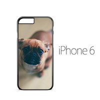 Puppy Eyes pug iPhone 6 Case