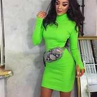 Fashion Simple Solid Color Turtleneck Long Sleeve Bodycon Mini Dress
