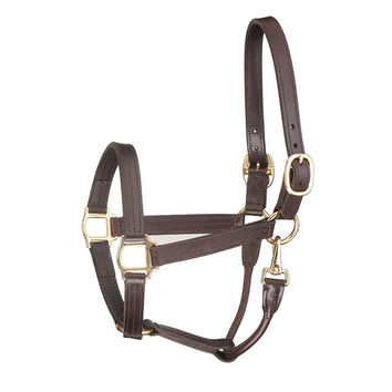 Perris Track Style w/ Snap Leather Show Halter