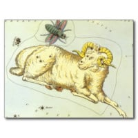 Vintage Zodiac, Astrology Aries Ram Constellation Postcard