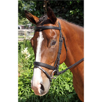 Nunn Finer Gifted Dressage Bridle