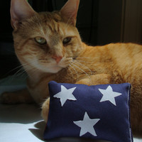 Catnip toy American flag cat toy  Memorial day cat by BaxCatandCo