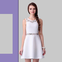 White Casual Lace Embroidered Top Sleeveless  Mini Dress