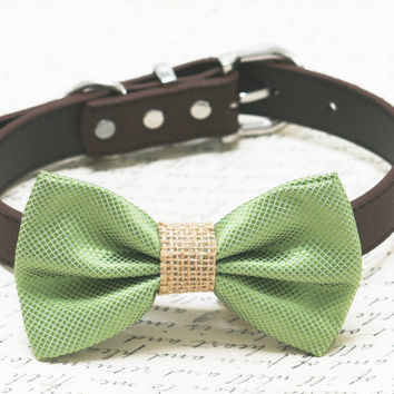 Green and brown dog bow tie, Green Burlap dog bow tie, wedding dog collar, Country, Rustic Wedding , dog birthday gift, Grass Green bow