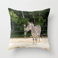 Zebra Pillow Cover Photography Print Animal Black White Home Decor Unique Pillow Gift under 50