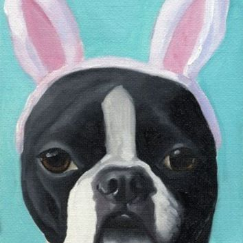 BOSTON TERRIER WITH RABBIT EARS