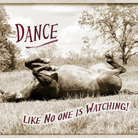 Funny Dance like No One is Watching Horse in Pasture Quote Note Card in Sepia