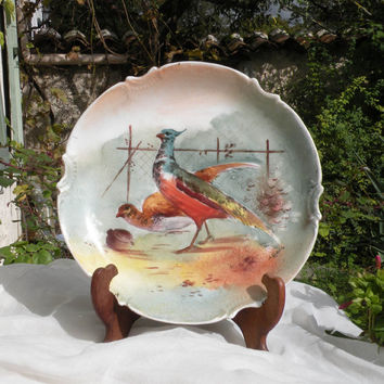 Limoges vintage pheasant plate. French porcelain wall plate by renowned French manufacturer Limoges, vintage wall plate, country home