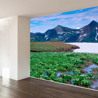 Paul Moore's Marsh Marigolds, Crested Butte, CO Mural wall decal