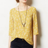 Eira Top by Vanessa Virginia Dark Yellow 6 P Tops